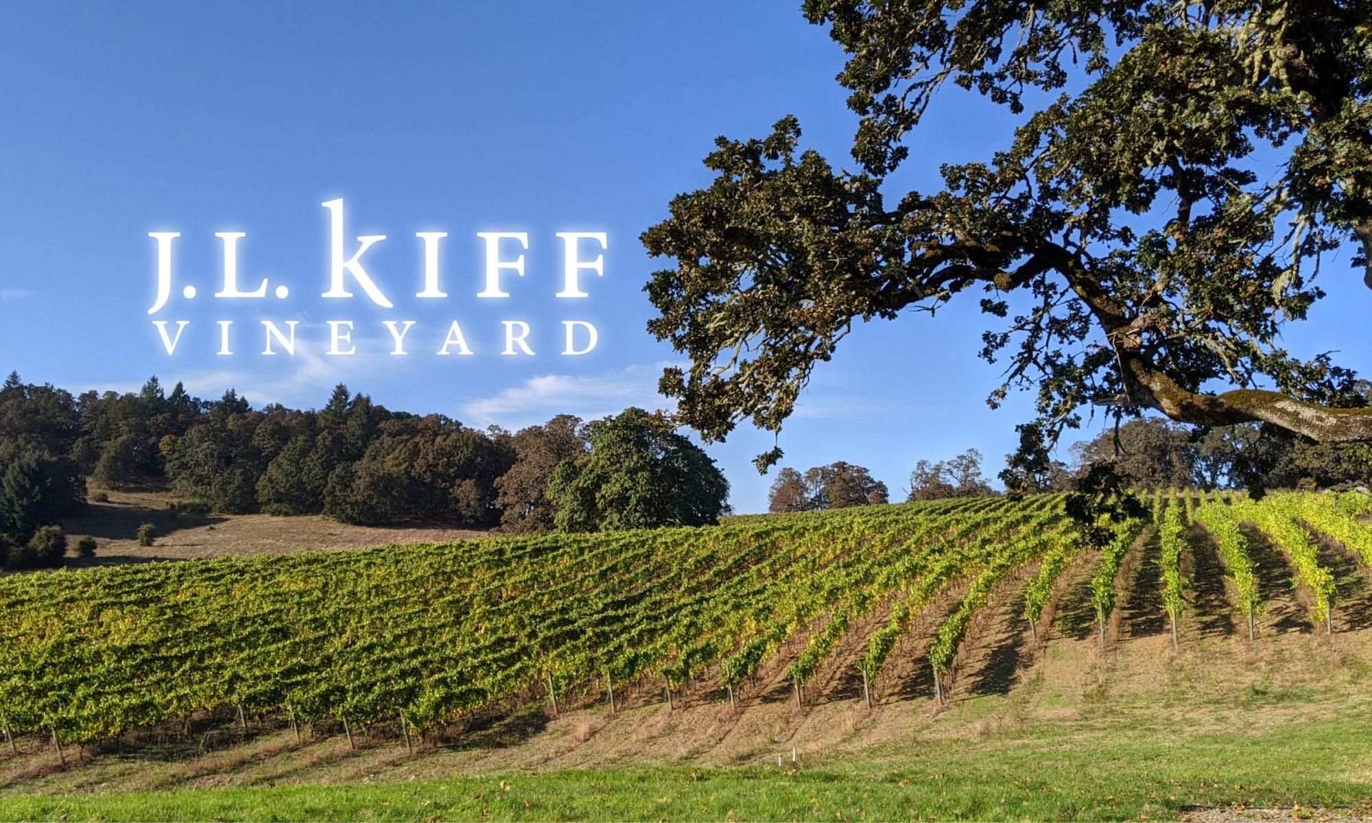 J.L. Kiff Vineyard